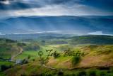 Landscape-28