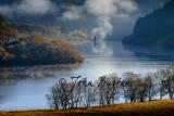 Landscape-29