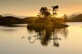 Landscape-33