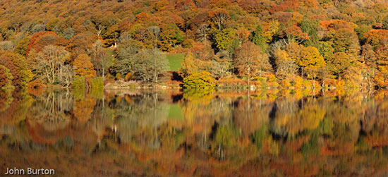 The Amazing Autumn Colours at Carreg-ddu