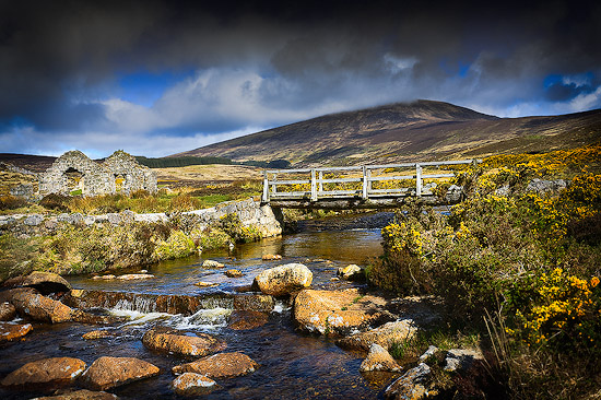 In the Wicklow Mountains