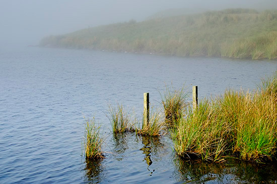 Llyn Egnant in the mist
